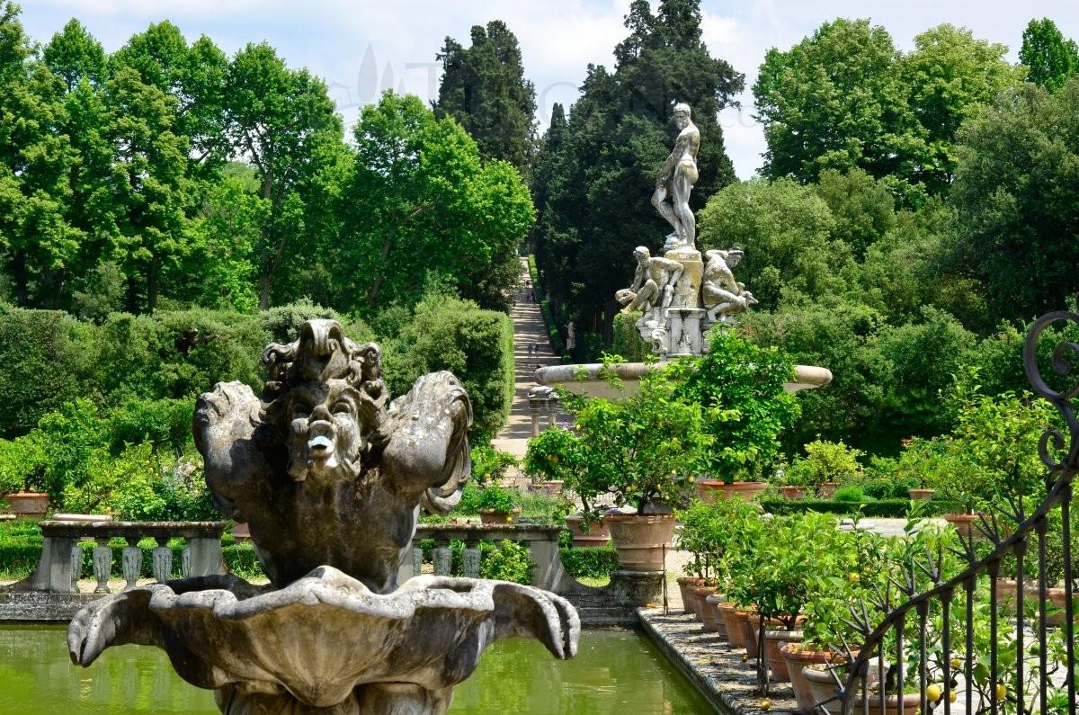Giardino di boboli florence boboli garden firenze for Jardines boboli