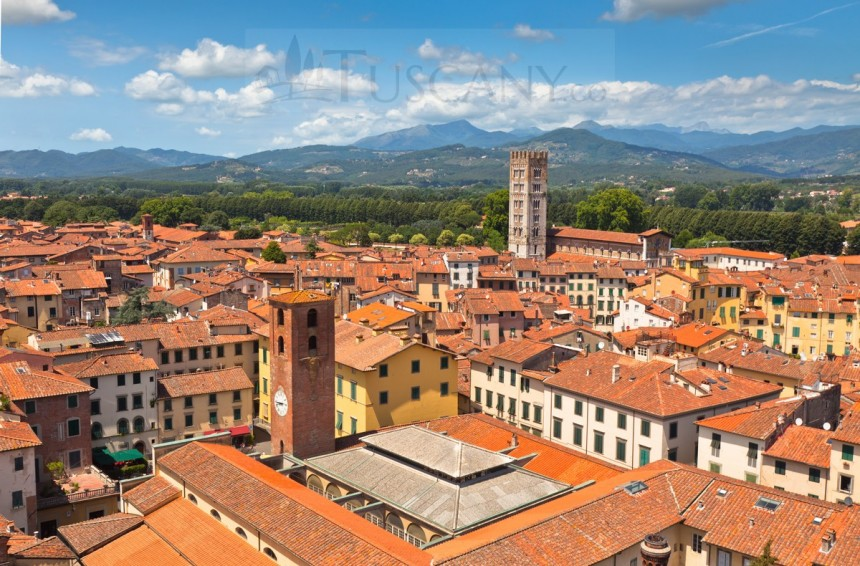 Lucca View