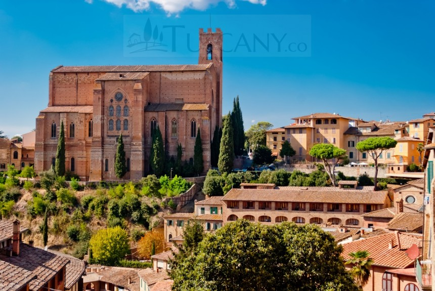 Saint Domenico Church Siena