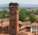 Torre Guinigi Lucca